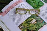 Rasen kalken: Anleitung und Hinweise auf Risiken